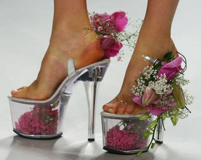 Flowers_abnd_shoes
