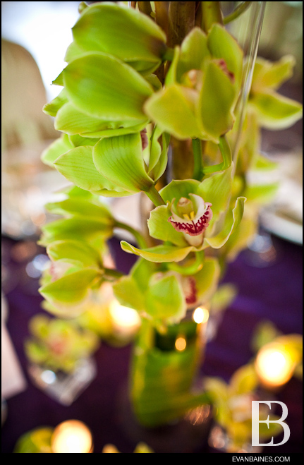 A trio of green carnations clusters ORCHIDS Willow branches with cymbidium